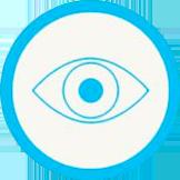 Icon vision