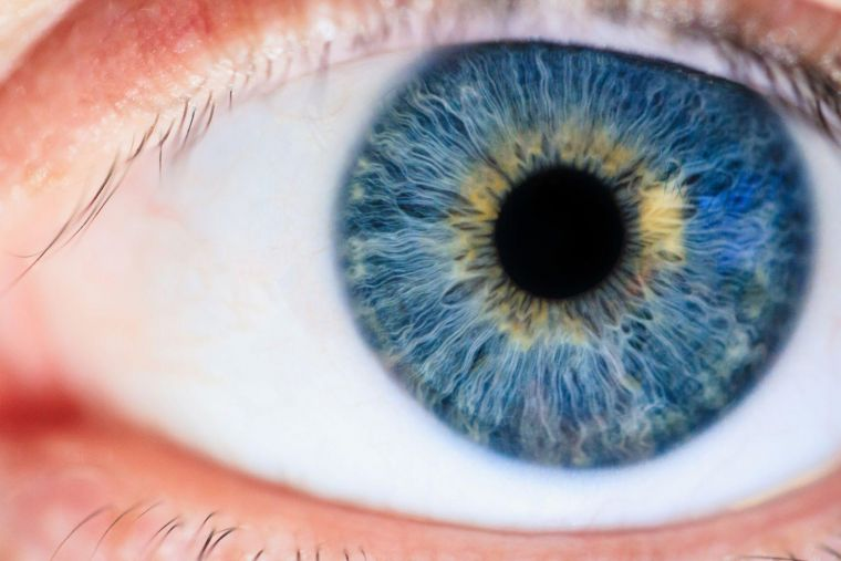 a close-up of an eye with a blue and gold iris